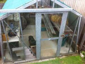 green house shade house glass house garden with shelving 3x3 Devonport Devonport Area Preview