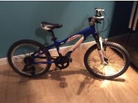Children's carrera mountain bike