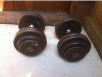 2x27.5kg metal dumbbells, home gym weights