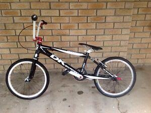 DK BMX Racing Bike PRO XXL Tennyson Brisbane South West Preview