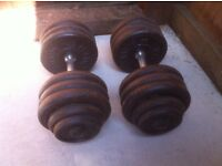 2x37.5kg metal dumbbells, home gym weights