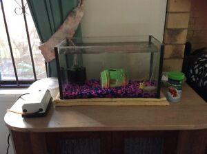 Fish tank, filter and pump Mount Gravatt Brisbane South East Preview