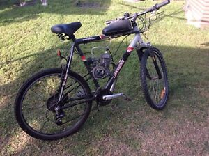 Motorised bike Grafton Clarence Valley Preview