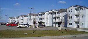 Northgate Apartments - 2 Bedroom Apartment for Rent
