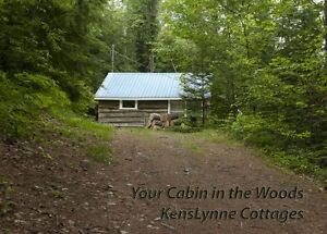 COZY WATERFRONT COTTAGE - AUGUST 14TH-19TH STILL AVAILABLE!