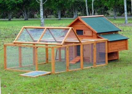 Chicken coops for sale east sussex