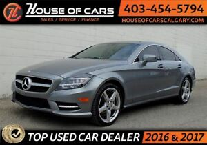 2013 Mercedes-Benz CLS-Class CLS 550 4MATIC AMG PACKAGE (ECO FUE