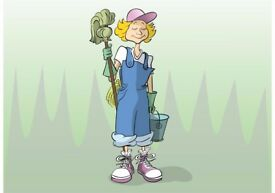 Domestic Cleaner/House keeper available for work.