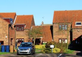 One bedroom one person mid terrace bungalow at Sudbury Court, Whittlesey. Available NOW!