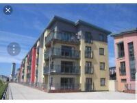 Apartment share in fisherman's ways, Swansea Marina - Sea Views