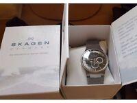 Skagen 809XLTTM Grey Dial Titanium Multifunction Men's Watch