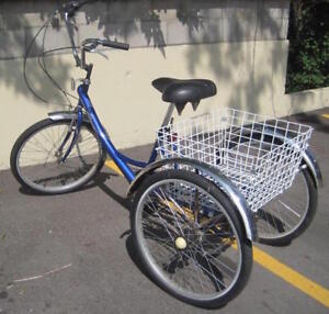 Adult Tricycle Like New