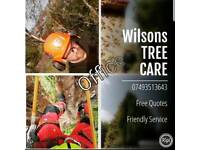 Tree Surgeon / Tree Care FREE QUOTES