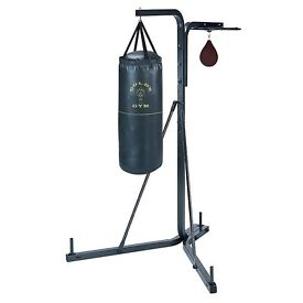 Golds Gym Multi Pupose Boxing Stand with Speedball place