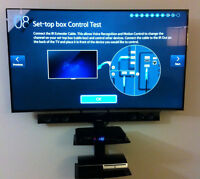 FAST AND AFFORDABLE TV MOUNTING AND INSTALLATION