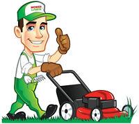 Tonte / coupe de pelouse / gazon professionel et tout amenagemen