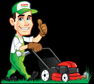 Affordable lawn care services !!! London Ontario image 1