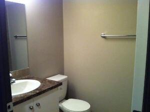 11729 123 ST - 2 Bedroom Lower Level suite Edmonton Edmonton Area image 7