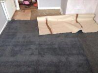 Carpet & Underlay