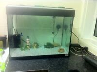 (SOLD) PRE-OWNED FLUVAL ROMA 90 LITRE FISH TANK - NEED GONE ASAP - NO FISH OR ACCESSORIES