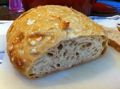 "SOUR DOUGH STARTER VERIFIED 100+yrs california gold rush country +recipes ""larry"