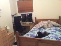 Double furnished room in flat share, for dog lovers only! Females preferred