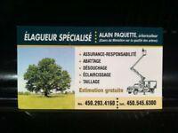 Élagueur spécialisé Alain paquette