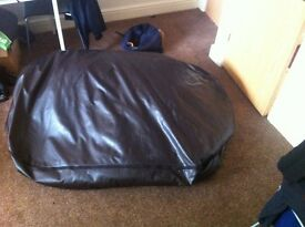 Massive Leather Beanbag