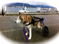 Pet Wheelchairs