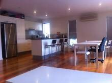 Shared room for Female at St Lucia St Lucia Brisbane South West Preview