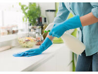 Domestic Home Cleaning Oxford, Abingdon & surrounding areas from £13.50 per hour