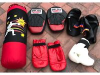 PUNCH BAG AND GLOVES PLUS KICK BOXING ITEMS