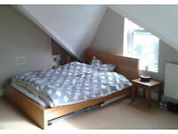 Spacious double in homely Stamford Hill flat