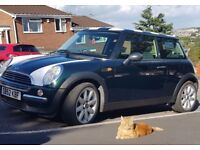 MINI 1.6 FOR SALE (Ginger Tom-Cat Not Included) - Long MOT, Service History, Low Mileage, Lovely Car