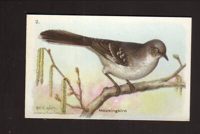 Mockingbird  1934 Church   Dwight Useful Birds Of America Card