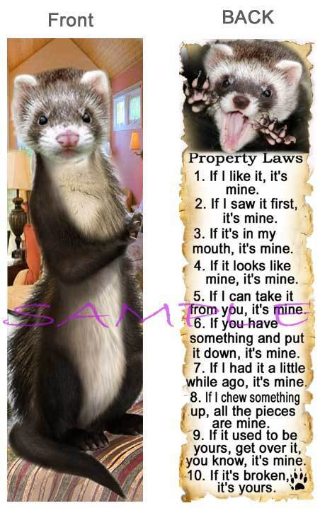 Brown FERRET BOOKMARK Pet RULES Property LAW Book Mark Lover Card ART Figurine