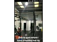 Monkey bar gym rig