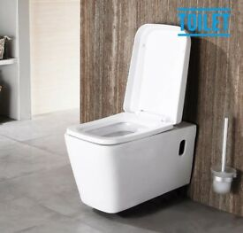 Wall hung toilet and soft close seat