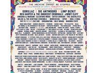 Boomtown festival ticket