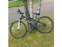 Boys ridgeback mx24 bike
