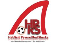 Hatfield Peverel Red Sharks under 8 football team are currently recruiting new players 😊⚽️