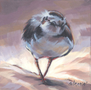Plover Oil Painting, Sweet Plover on a 5×5 inch Gallery Wrapped