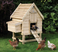 Want to keep chickens but don't have the property? We do!