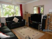 2 bedroom flat in Homer Close, Gosport, PO13 (2 bed)