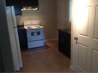 Newly Renovated 2 Bedroom Ground Level Suite - $1350