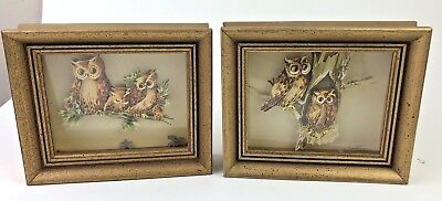 """Two Mid Century Shadow Box 3-D Owl families Framed """"A HOOT"""""""