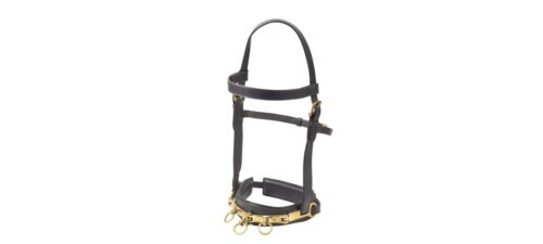 NEW Camelot Leather Lunging Cavesson / Caveson