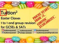 Easter Revision Classes & Tuition for GCSE & SATs. Either 1 to 1 tuition or group tuition available