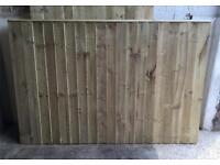 STRAIGHT TOP FEATHER EDGE TANALISED WOODEN FENCE PANELS ~ HIGH QUALITY 🌳