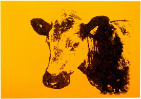 VERY LARGE NEW YELLOW & BLACK COW PORTRAIT ABSTRACT MODERN CANVAS WALL ART PAINTING | Free Delivery